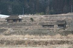 2011.4.3.おひさまセット.JPG