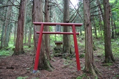 2011.7.8.国営公園用地内1.JPG