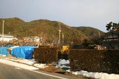 2012.01.02.21.JPG
