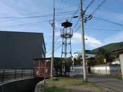 2012.08.04.1.JPG
